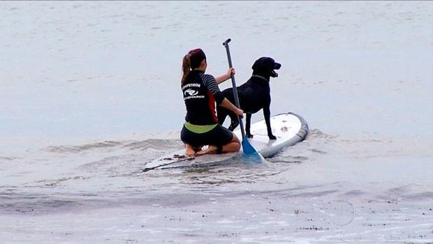 Maigret acompanha a dona durante o surf em Ponta Negra (Foto: Reprodução/Inter TV Cabugi)