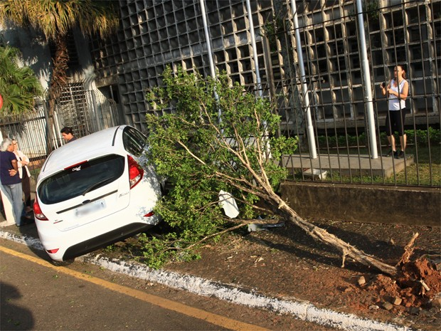 Motorista perdeu o controle da direção, atingiu motociclista, árvore e grade do Fórum em Franca (SP) (Foto: Dirceu Garcia/ Comércio da Franca)