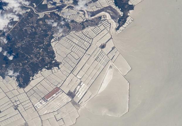 Fazendas de criação de peixes são vistas pelos astronautas da ISS no litoral da província de Liaoning, costa nordeste da China (Foto: NASA)