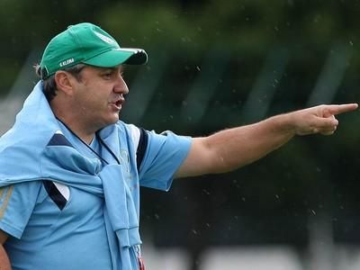 Gilson Kleina (Foto: Cesar Greco/Ag Palmeiras/Divulgação)