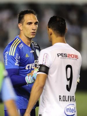 Fernando Prass e Ricardo Oliveira - Santos x Palmeiras (Foto: Marcos Ribolli)
