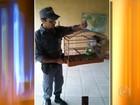 Homem é multado em R$ 21 mil por criar pássaros silvestres ilegalmente
