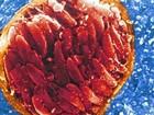 Pesquisa liga comportamento agressivo a parasita no cérebro