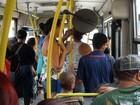 Piracicaba tem tarifa de ônibus mais cara que em 36 municípios maiores