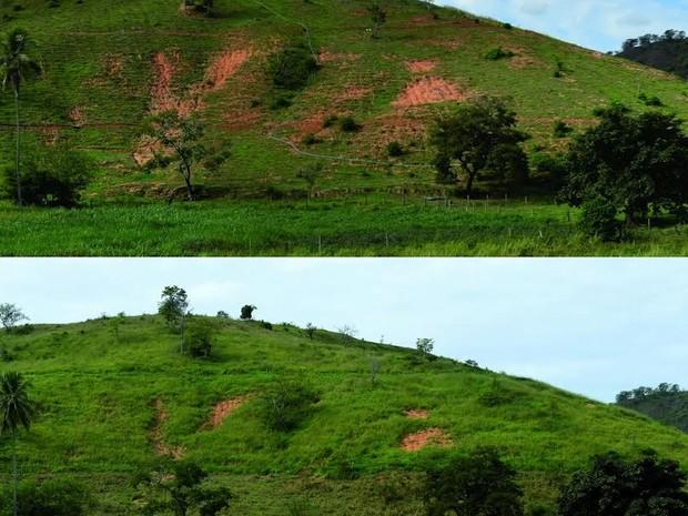Antes e depois: terreno utilizado na pesquisa de combate à erosão em 2015 e 2016 (Foto: Roman Seliger / Divulgação)