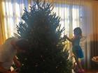 Gisele Bündchen mostra Tom Brady e a filha montando árvore de Natal