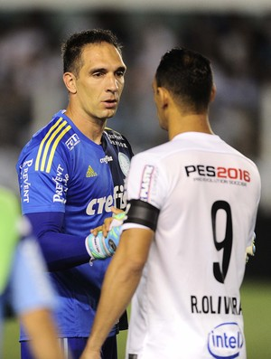 Fernando Prass e Ricardo Oliveira - Santos x Palmeiras (Foto  Marcos  Ribolli) 81d054f9d9beb