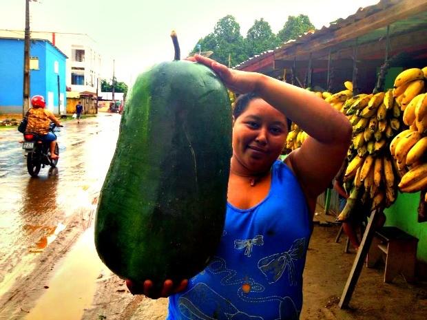 Pepino Gigante (Foto: Foto cedida)