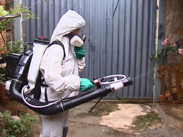 Combate ao mosquito Aedes Aegypti na região de Campinas (Foto: Reprodução/ EPTV)
