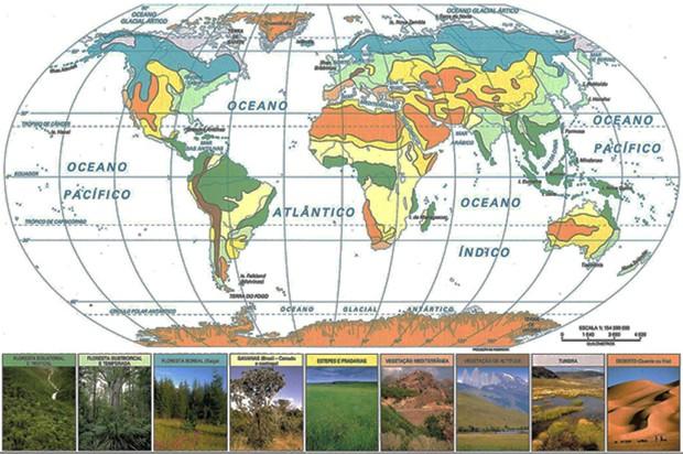 Climas e formações vegetais (Foto: Reprodução)
