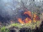 Incêndio em área de mata assusta moradores em São João da Boa Vista