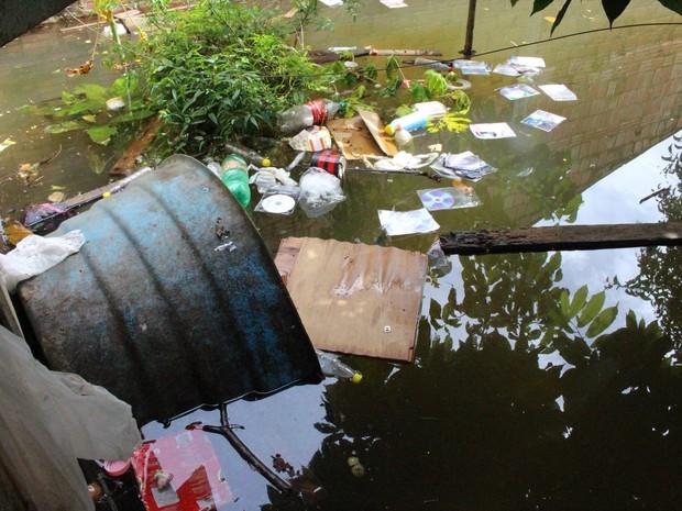 Lixo doméstico fica é levado pelas águas do Rio Madeira (Foto: Ivanete Damasceno/G1)