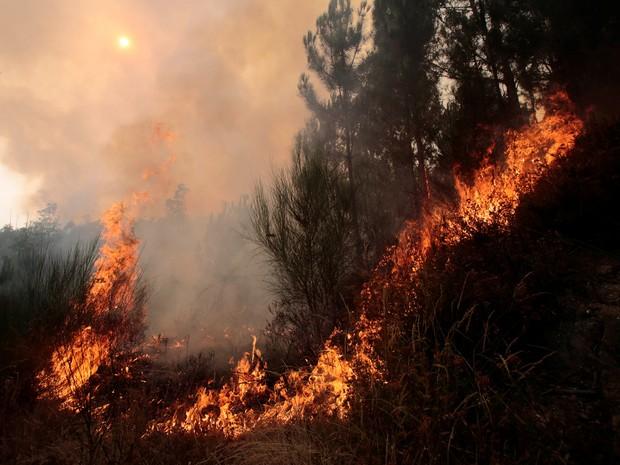 Focos se multiplicaram de maneira preocupante na Galícia (Foto: Miguel Vidal/Reuters)