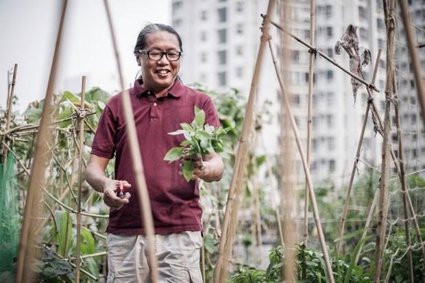 Agricultor Osbert Lam exibe vegetal colhido em sua fazenda. (Foto: Philippe Lopez/AFP)