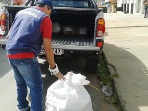 250 pacotes foram apreendidos em fiscalização (Foto: Michelly Oda / G1)