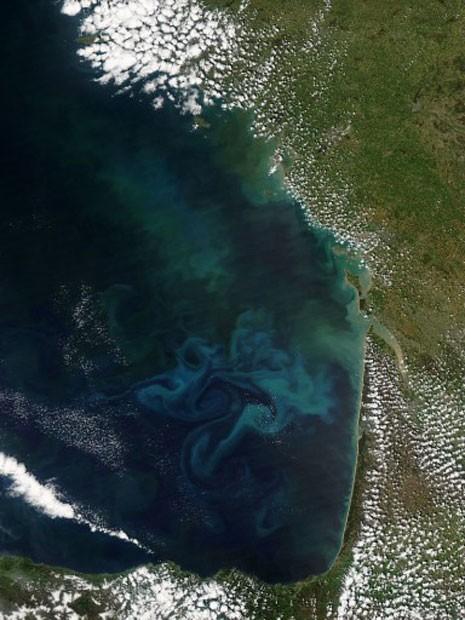 Formação de fitoplâncton na Baía de Biscaia, na costa da França (Foto: Nasa/AFP)