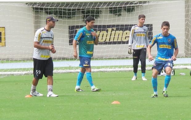 Renato Botafogo  (Foto: Globoesporte.com)