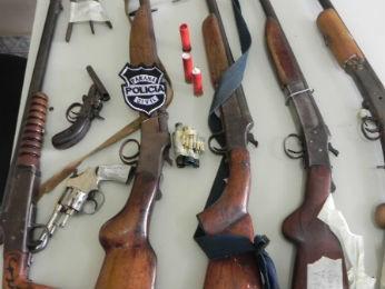foram apreendidas armas de fogo ilegais, munição para recarga e objetos utilizados na confecção de armadilhas  (Foto: Divulgação / Polícia Civil)