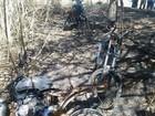 Motos furtadas são encontradas queimadas em canavial em Dracena