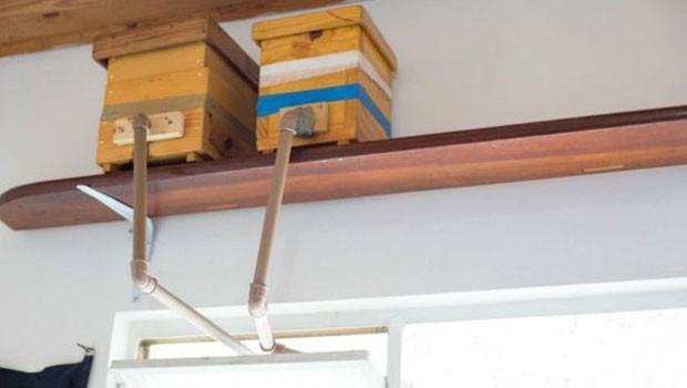 Apicultor amador criou instalou canos de PVC para permitir circulação de abelhas em apartamento. (Foto: Paula Mouora/BBC Brasil)