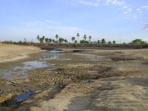Moradores de Cacimbinhas reclamam que água que restou não serve pra beber. (Foto: Arquivo Pessoal/Ramon Lustosa)