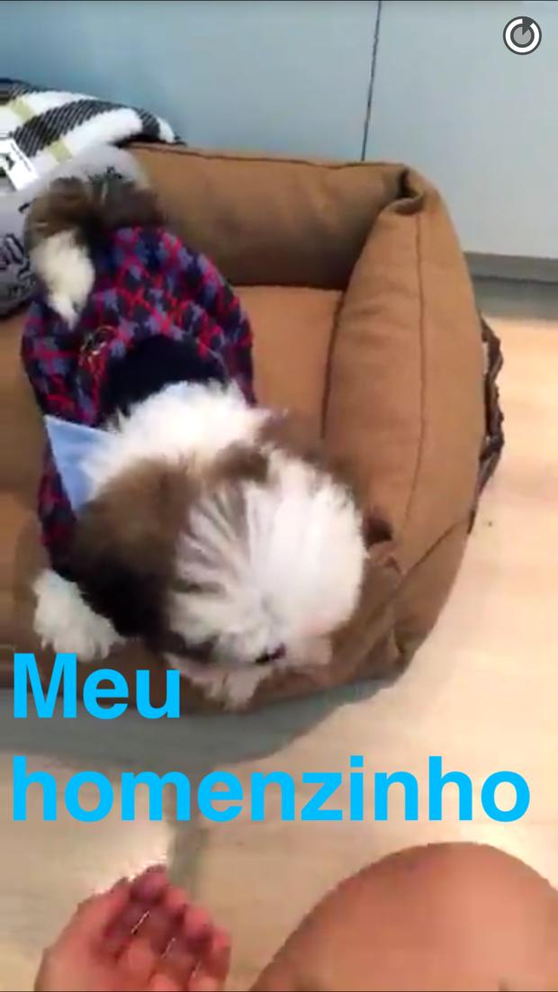 cachorrinho de Bruna Marquezine (Foto: Reprodução/Snapchat)