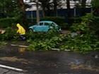 Água de chuva invade casas e vento destelha oficina em Mogi