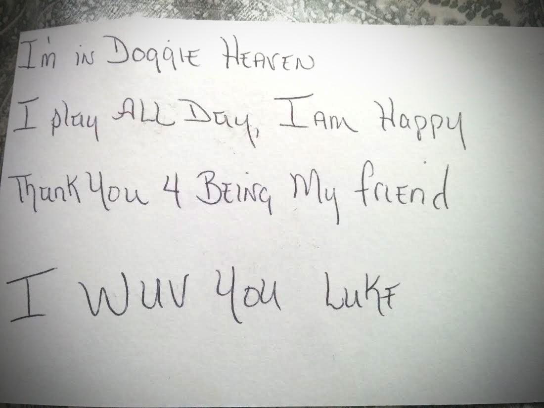 Menino de 3 anos escreve carta ao cachorro já morto e recebe resposta surpreendente