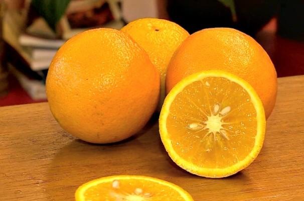 laranja (Foto: Reprodução/RBS TV)