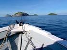AquaRio terá animais do entorno das Ilhas Cagarras; veja vídeo