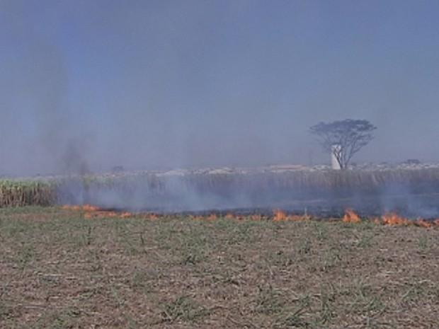 Incêndios prejudicam ainda mais a qualidade do ar na região (Foto: Reprodução/ TV TEM)