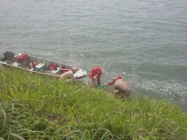 Duas equipes do Corpo de Bombeiros participaram das buscas (Foto: Ana Paula/TV Anhanguera)