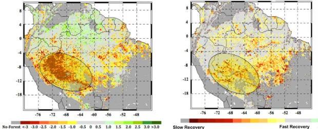 Amazônia mostra sinais de degradação devido a mudanças climáticas (Foto: Divulgação/NASA/JPL-Caltech/GSFC)