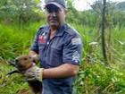 Bombeiros resgatam filhote de capivara de poço em Votuporanga