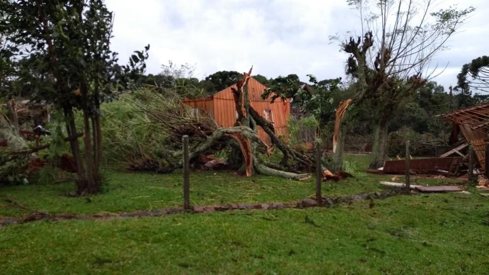 Ventania derruba árvores em Capão Bonito do Sul, no Norte do Rio Grande do Sul (Foto: Carlos Alberto/Arquivo pessoal)
