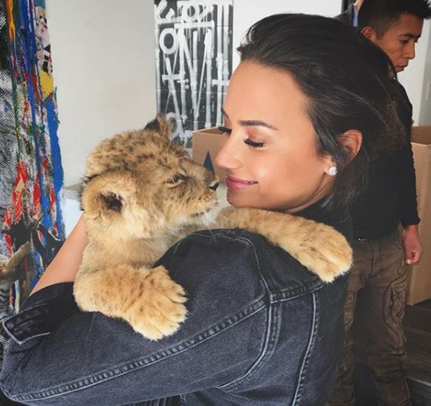 Demi Lovato com o tigre (Foto: Reprodução/Instagram)