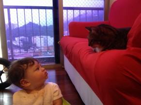 Por que os gatos ronronam? Quero saber (Foto: Divulgação/Isabel Butcher)