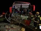 Acidente de ônibus mata um e deixa 20 feridos na Dutra em Jacareí, SP
