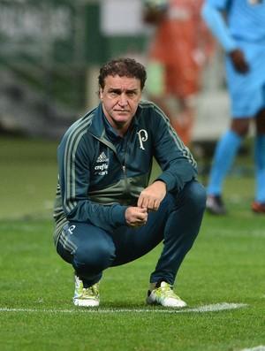 Palmeiras x Chapecoense Cuca (Foto: Marcos Ribolli)