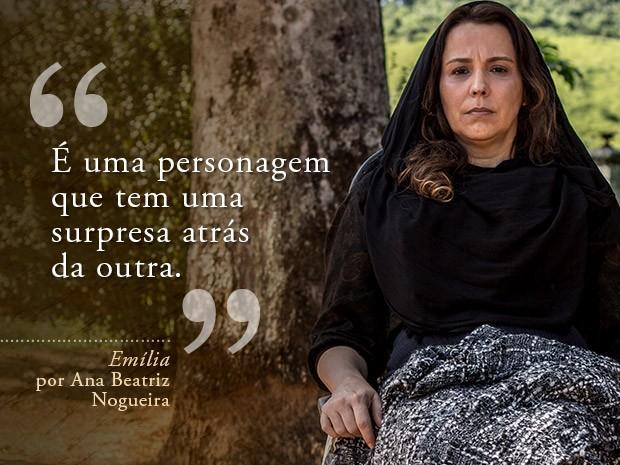 Card Emília - Ana Beatriz Nogueira (Foto: Fábio Rocha/Gshow)
