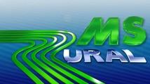 Veja os vídeos das notícias do campo (Reprodução/TV Morena)
