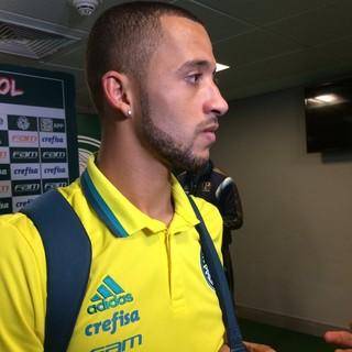 Vitor Hugo Palmeiras (Foto: Felipe Zito)