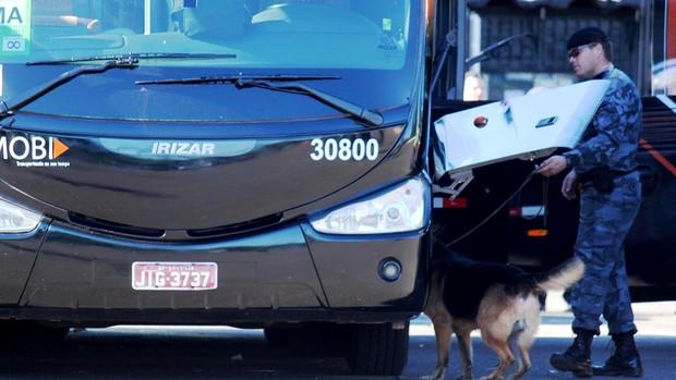 Polícia faz varredura nos ônibus de Brasil e Japão (Foto: Fabrício Marques)