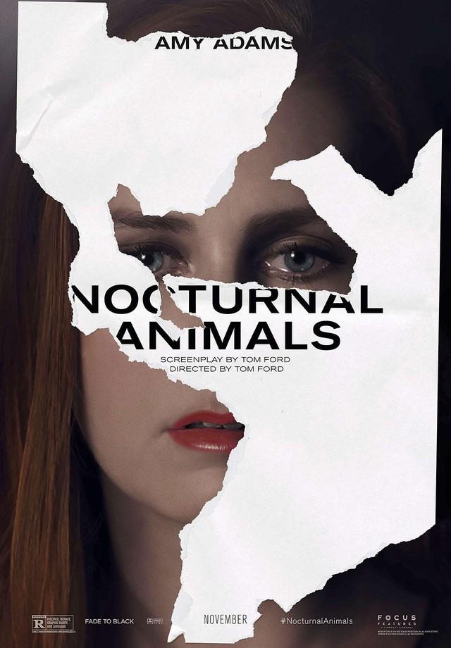 Poster Animais Noturnos (Foto:  )