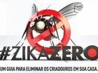 Governo se mobiliza contra Aedes aegypti (Divulgação/Defesa)