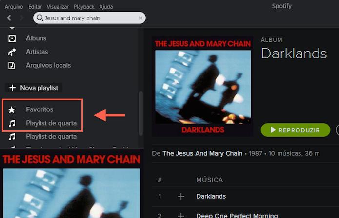Acessando as músicas salvas nas playlists e na pasta favoritos (Foto: Reprodução/Marvin Costa)