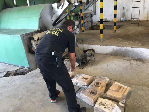 Droga estava armazenada desde julho de 2016 quando foi apreendida (Foto: Divulgação/Polícia Federal)