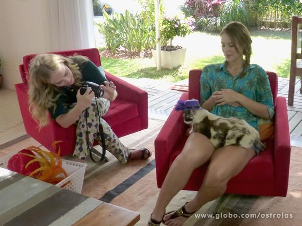Angélica bate foto de um dos gatinhos da atriz (Foto: Estrelas/TV Globo)