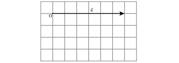 Gráfico vetor (Mecânica) (Foto: Reprodução)