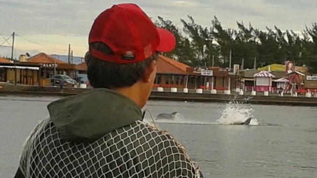 Botos surpreendem pescadores em Tramandaí (Cristiano Mazoni/RBS TV)